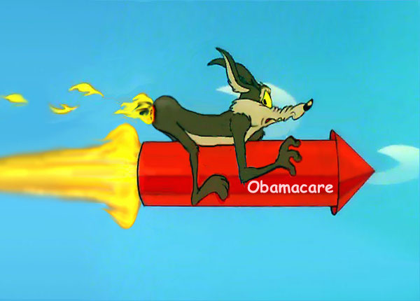 wylie coyote Obamacare1